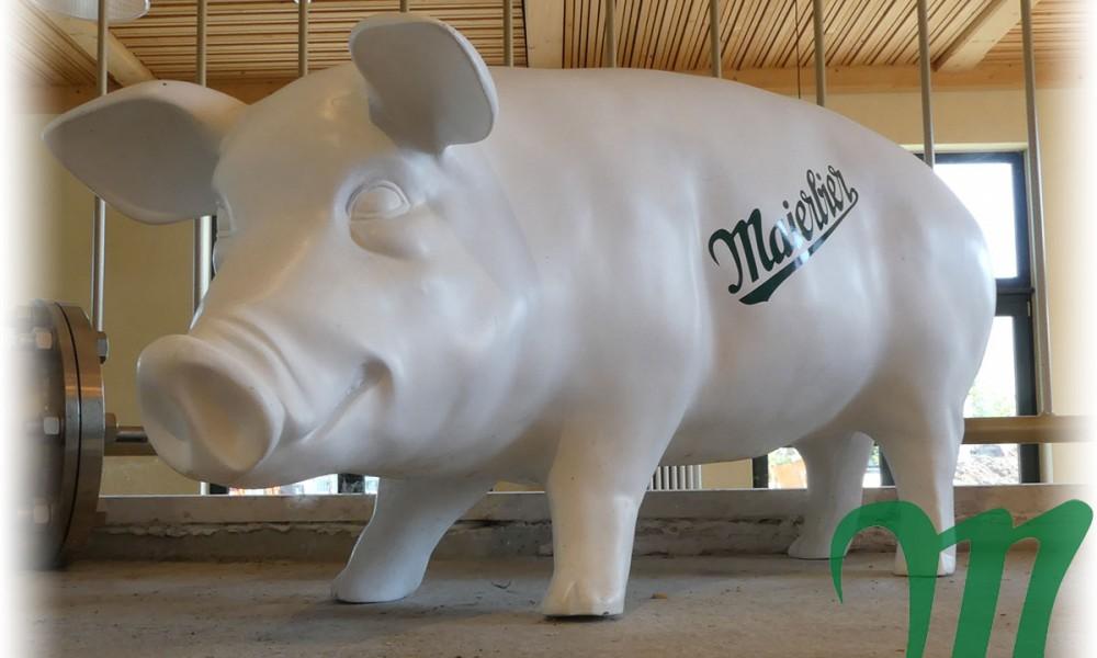 Maierbier-Schwein